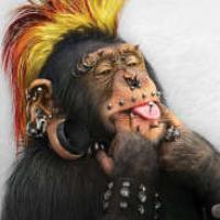 AGN's avatar