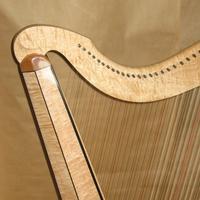Harp's avatar