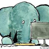 Pachy's avatar