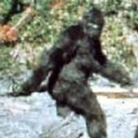 Russter's avatar