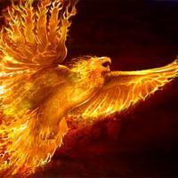 bianlink's avatar