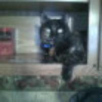 boots74's avatar
