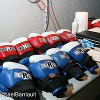boxer3's avatar