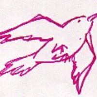 crisedwards's avatar