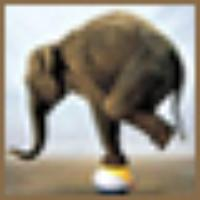 damien's avatar