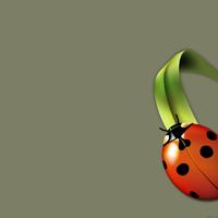 laineybug's avatar