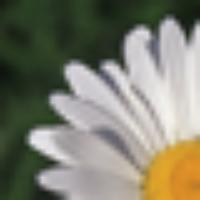 ryanpowell's avatar