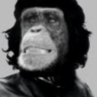 the100thmonkey's avatar
